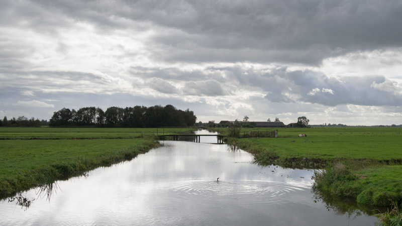 Water en wolken in de polder