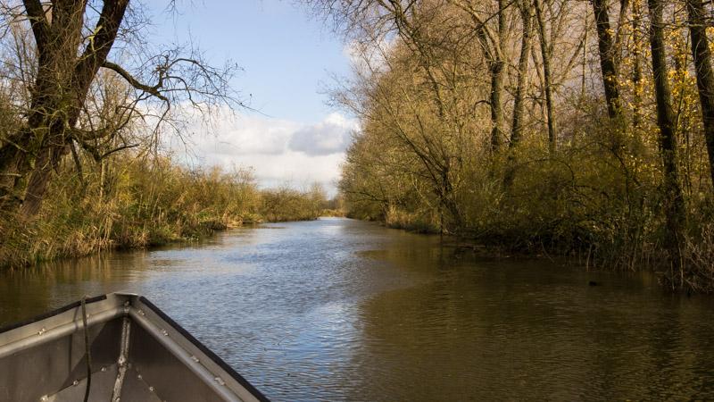 Varen door de Biesbosch - boot